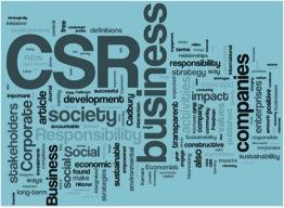 CSRwordle
