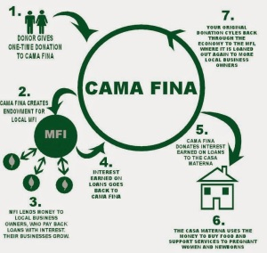 Info-Graphic-Cama-Fina__02.07.14