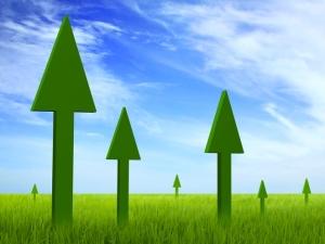 impact-invest-trees